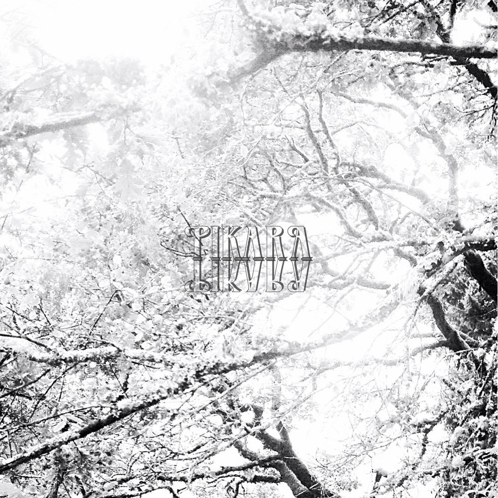 Pikara-This-Hollow.jpg