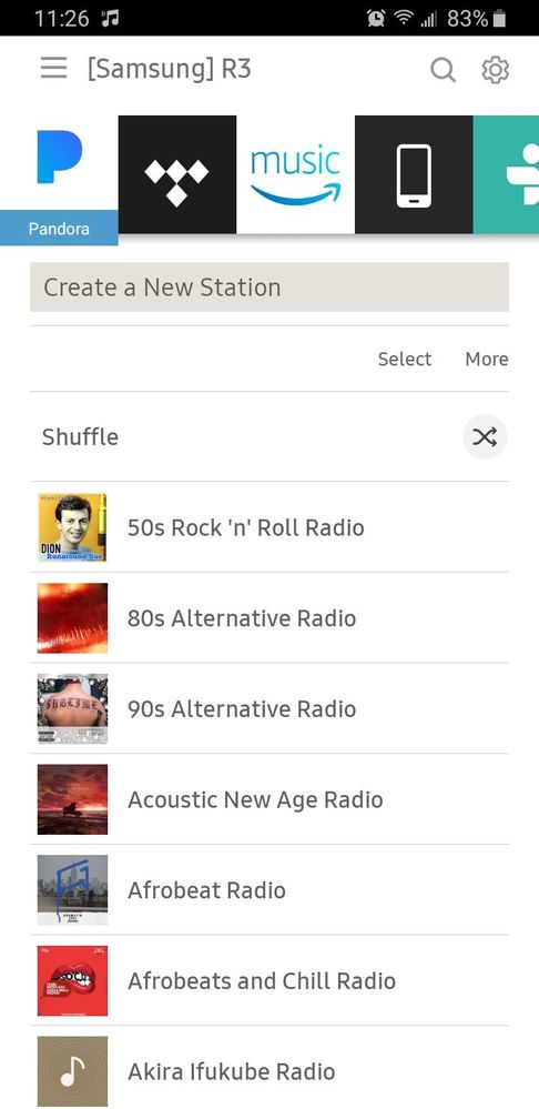 Only Stations no Albums or Artists